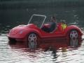 Autoausflug auf dem See