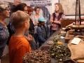 Cottbus Stadtrundgang und -fahrt, Apothekenmuseum informiert auch über TheodorFontane